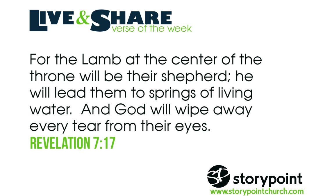 12.22.19 – Verse of the Week